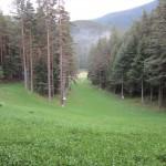Edelvays_ski_trace